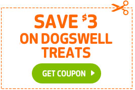 Your dog deserves a little something extra for all the love they bring to your life.