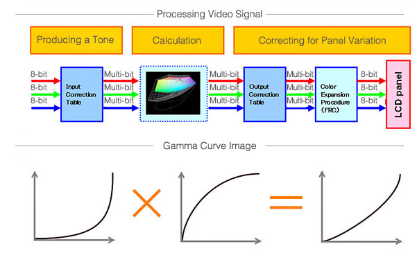 Processing Video Signal / Gamma Curve Image