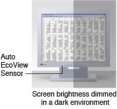 auto ecoview sensor