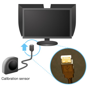 Calibration sensor