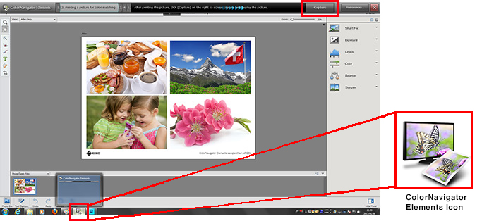 Import the Displayed Photo