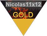 Nicolas11x12-Gold-Award.jpg