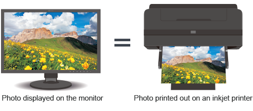 print matching