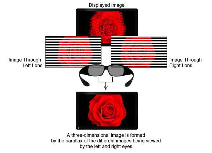 Polarized_3D.jpg