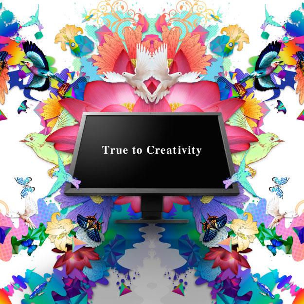 LCD Monitors - ColorEdge Series