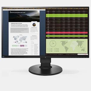 Professional LCD Monitor - EV2750