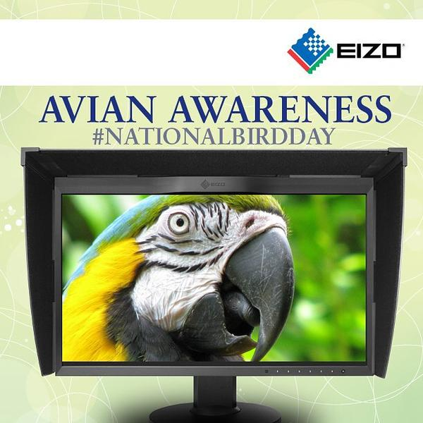 Did you know January 5 is Avian Awareness Day? To all landscaping, outdoor, nature and environmental photogs, Happy Bird Day!