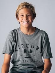 Cole Alves