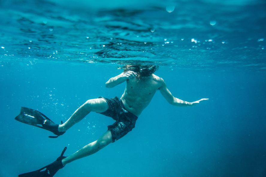 adventure, travel, ocean life